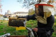 Ο π. ΝΕΚΤΑΡΙΟΣ ΔΡΟΣΟΣ – Αρχιμανδρίτης, καθηγητής και μελισσοκόμος!
